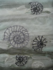 Ammonites_by_Kate_Davis